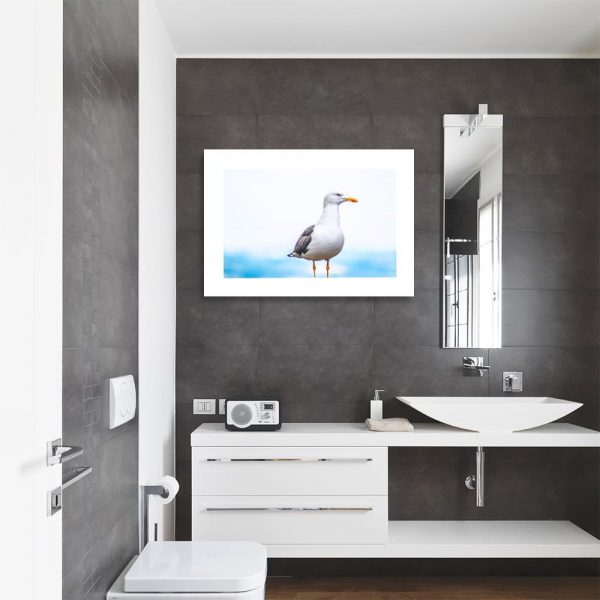 Plakat morski ptak