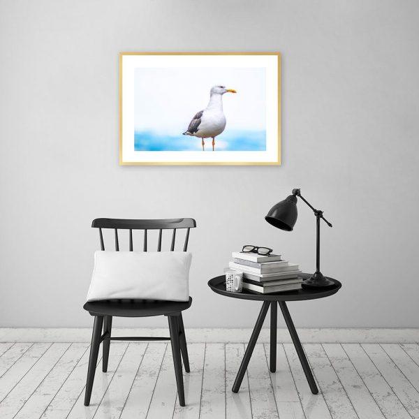 Plakat ptak morski