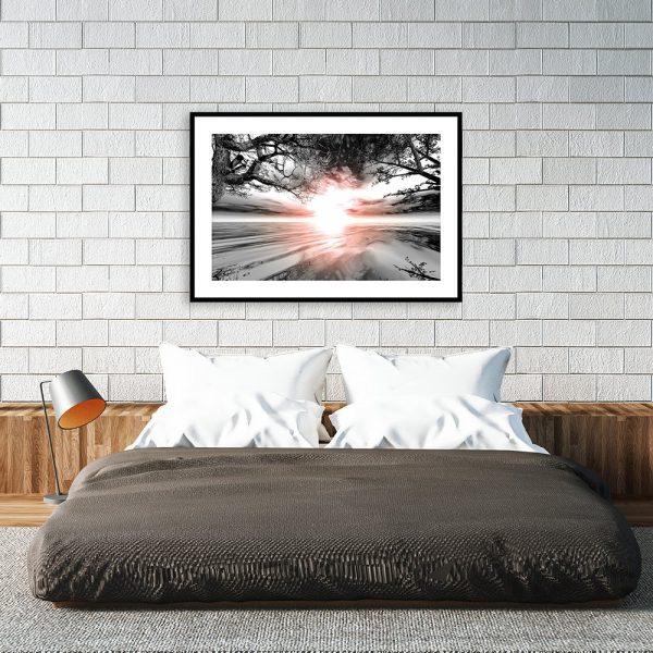 Plakat słońce i drzewa