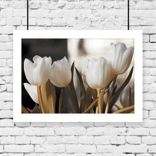 Plakat zielono białe tulipany