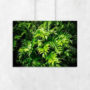 plakat zielone liście na ścianę