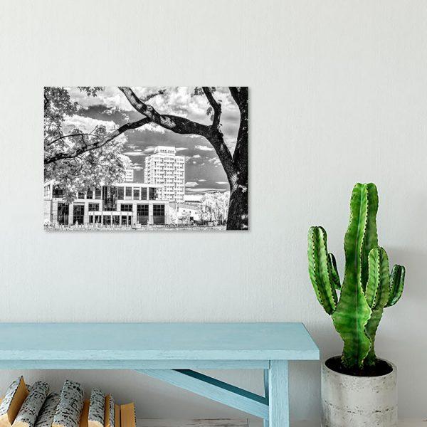 Obraz w kolorze czarno-białym