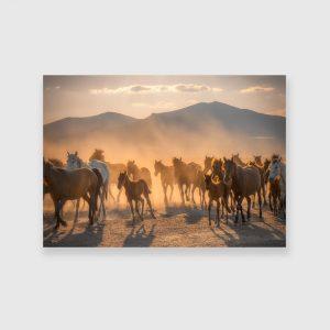 Obraz z motywem koni