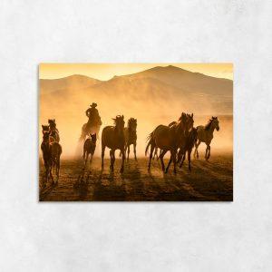 Obraz konie