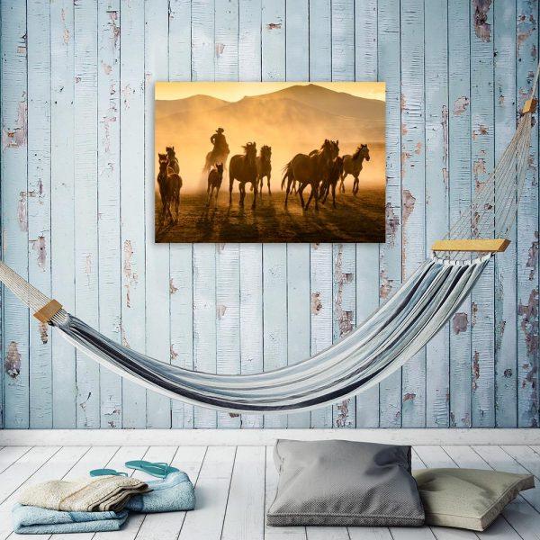 Obraz western