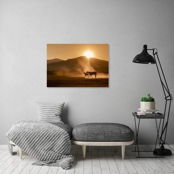 Obraz z końmi na pustyni