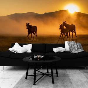 Tapeta konie i zachód słońca