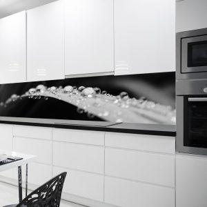 czarno-biała fototapeta kuchenna z liściem