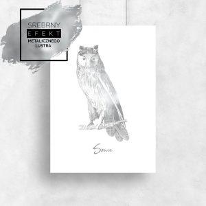 srebrny plakat sowa