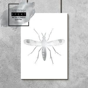 plakat metaliczny owad