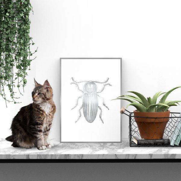 plakat posrebrzany z motywem insekta