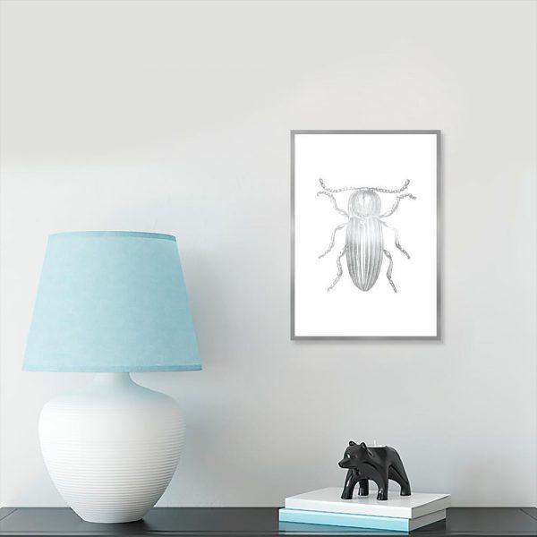 plakat srebrny z insektem