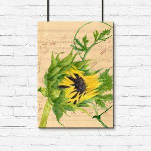 słonecznik jako kwiatek na plakacie