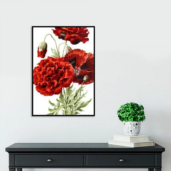 czerwone kwiaty na białym tle