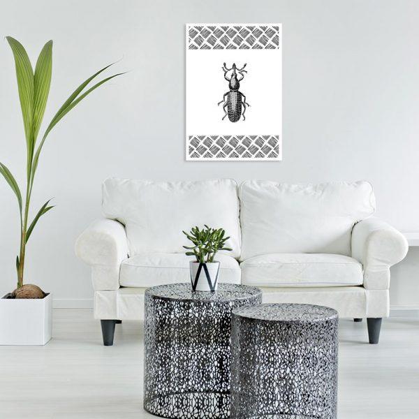 robak biało-czarny