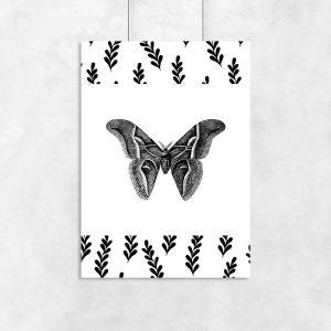 plakat z motylkiem jako dekoracja