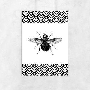 mucha na plakacie ze zwierzętami