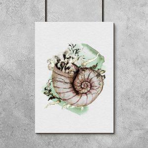 plakat z muszlą ślimaka