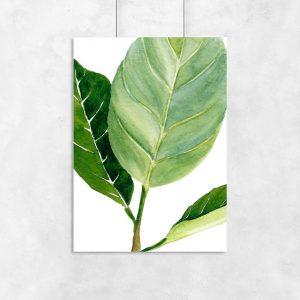 plakat z motywem zielonych liśći