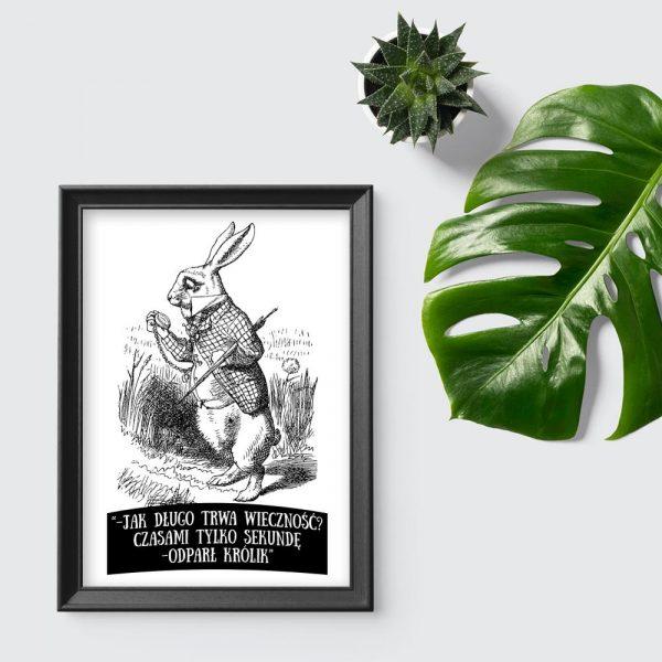 plakat ilustracja alicja w krainie czarów